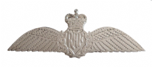 Pilot Wings Royal Air Force RAF MOD Nickel Pin Badge / Brevet